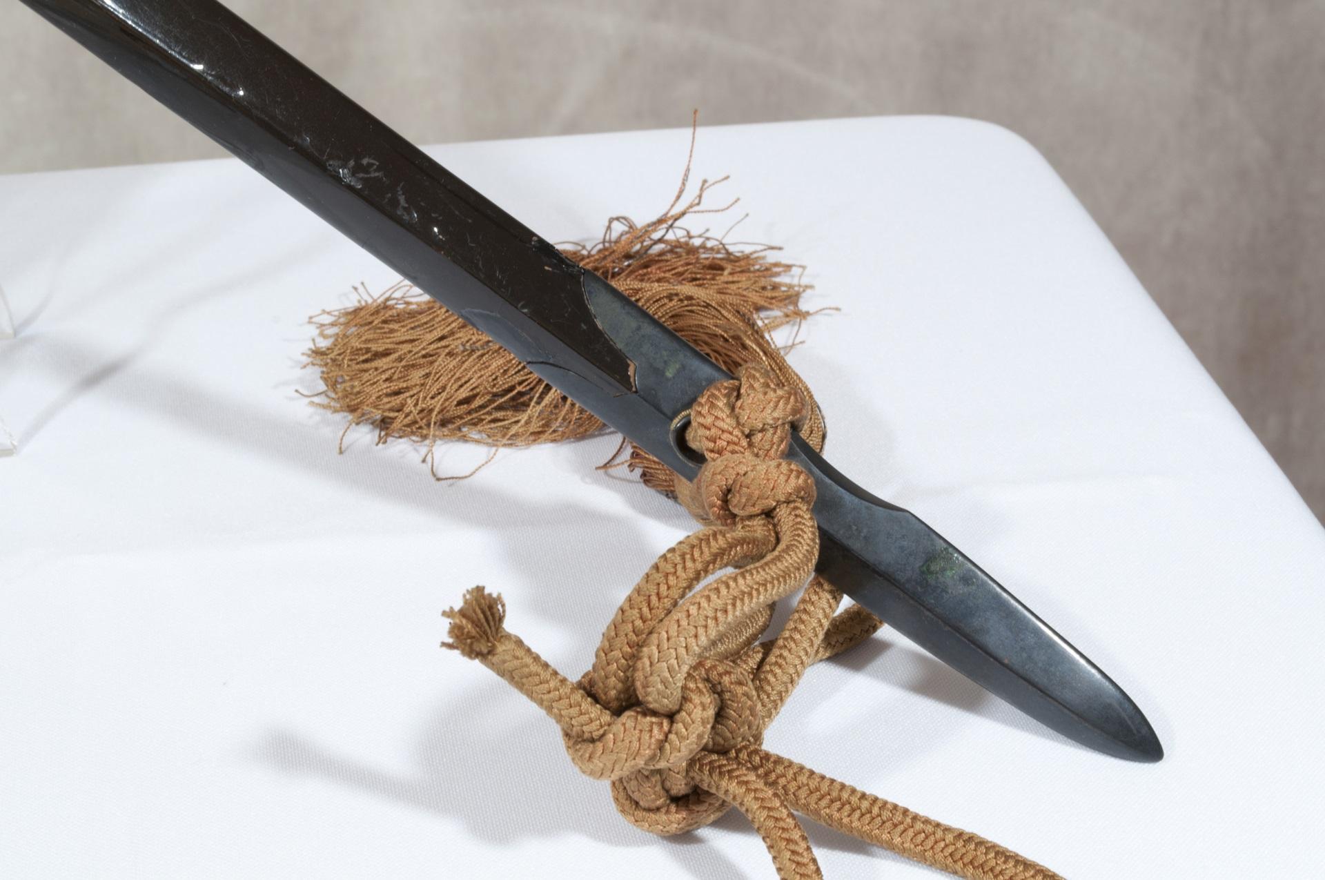 Saihai samurai (3)